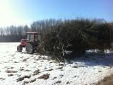 traktorius-belarus